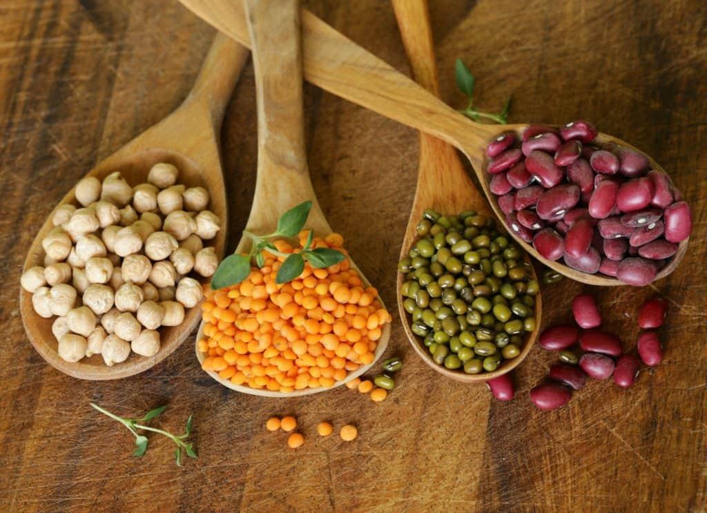 donáška, vegetariánska 28-čka, , antónia mačingová, ľahké chudnutie